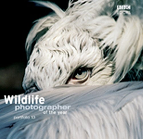 Wildlife Photographer of the Year Portfolio 13 (Photography) por Harry Ricketts