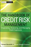The Handbook of Credit Risk Management: Originating, Assessing, and Managing Credit Exposures (Wiley Finance 813) (English Edition)