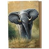 Tree Free Grußkarten 66702-Elefant 12 Count Karteikarten-Set