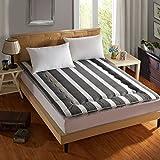 Nclon Maschinenwaschbar Zusammenklappbar Tatami-matten,Kosteneffektive Fußmatten Matratze Für Student Schlafsaal-Einfach 120x200cm(47x79inch)