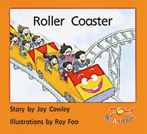 ROLLER COASTER (DOMINIE JOY READERS)