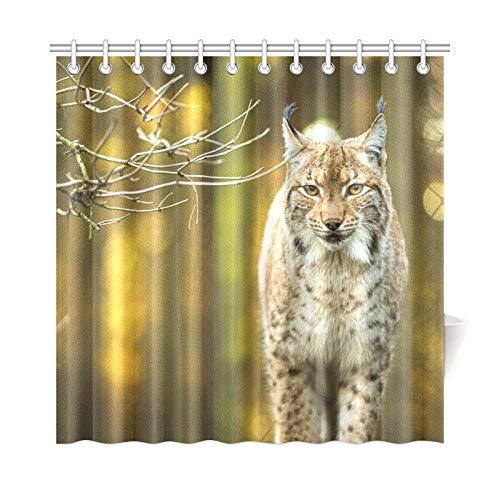 JOCHUAN Home Decor Bath Curtain Eurasian Lynx Lynx Lynx Polyester Fabric Waterproof Shower Curtain for Bathroom, 72 X 72 Inch Shower Curtains Hooks Included Waterproof Lynx