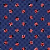 0,5m Jersey Marienkäfer auf Punkten dunkelblau 5% Elasthan