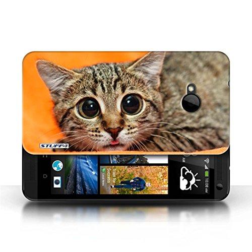 Hülle Case für HTC One/1 M7 / Scheues Kätzchen Entwurf / Lustige Tiere Collection Scheues Kätzchen