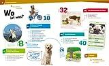 Hunde. Helden auf vier Pfoten (WAS IST WAS Sachbuch, Band 11) - 2