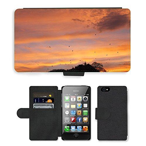 Just Mobile pour Hot Style Téléphone portable étui portefeuille en cuir PU avec fente pour carte//m00138148Oiseaux Paysage Coucher de soleil nuages ciel//Apple iPhone 44S 4G