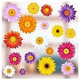 Stickers pour fenêtre - 18 Superbes Floral Stickers électrostatiques décoratifs au Motif Gerbera et Pâquerette - Permet d'éviter Que Les Oiseaux ne Se cognent dans Vos fenêtres