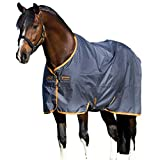 Horseware Amigo Turnout Hero 6 lite Excalibur orange Regendecke (125)