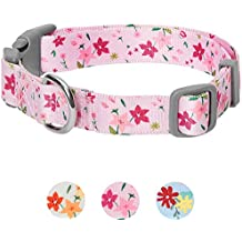 Umi. Essential Made Well Floral Dog Collar in Pink, Medium, Neck 37cm-50cm, Adjustable Collars for Dogs