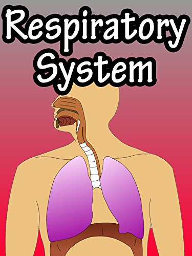 Respiratory System Cover