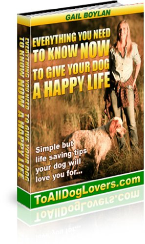 Everything You Need to Know NOW to Give Your Dog a Happy Life