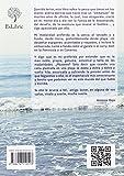 Image de La pesca desde costa en el sur y en Canarias