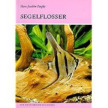 Die Segelflosser: Gattung Pterophyllum