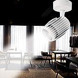 Modenny 20W / 30W / 40W LED COB Deckenleuchte Bild Scheinwerfer Aufputz Lampe Schwarz/Weiß (Color : White-White Light, Größe : 40w)