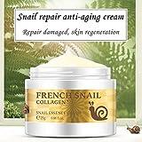 gaddrt Schnecke Repair Anti Aging Creme Collagen feuchtigkeitsspendende Repair Hyaluronsäure creme