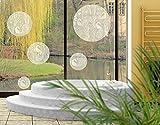 Fenstersticker No.517 Kreise Swan Lake 5er Set Geometrie Rund Vogel Gras Fenstersticker Fensterfolie Fenstertattoo Fensterbild Fenster-Deko Fensteraufkleber Fensterdekoration Glas-Sticker Größe: 94cm x 90cm