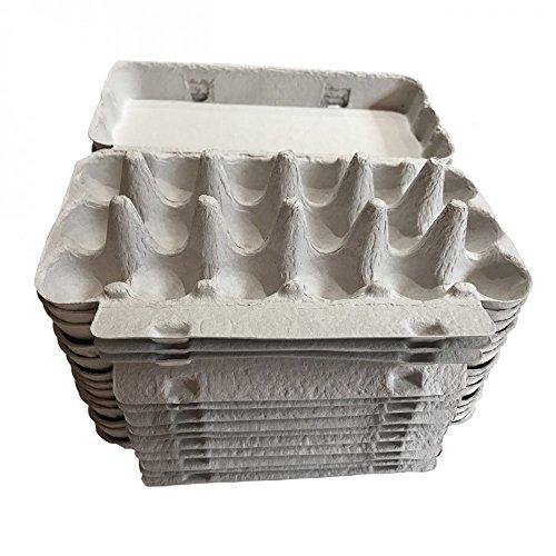 Boîtes pour Les Oeufs cailles en Carton - Lot de 50