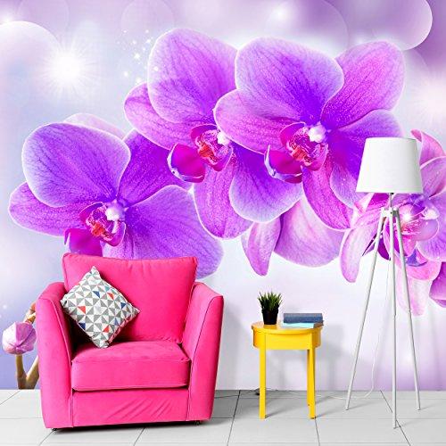 decomonkey | Fototapete Orchidee Blumen 250x175 cm |Tapete | Wandbild XXL | Riesen Wandbild | Bild | Fototapeten | Tapeten | Wandtapete |3D Modern Violett Rose |