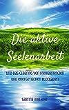 DIE AKTIVE SEELENARBEIT - Das Praxisbuch für Energetiker: Auf dem Weg der Meister El Morya, Saint Germain und Michael
