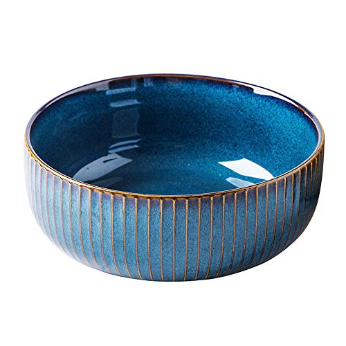 Hoteck Salatschüssel aus Keramik, Große Porzellan Salatschale Oder Suppenschale 21cm,Blau -