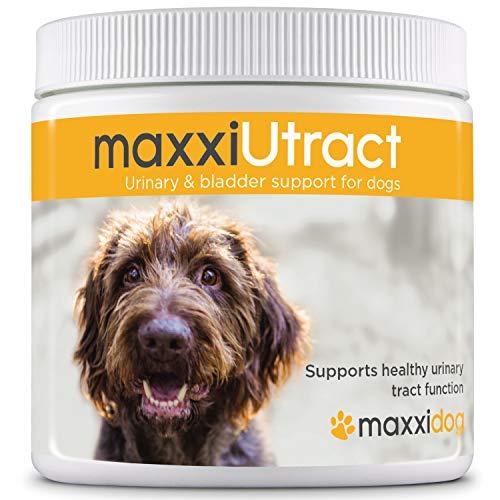 maxxidog - maxxiUtract Preiselbeere Harn- & Blasen-Nahrungsergänzungsmittel für Hunde - Hilft Infektionen des Harnwegs zu verhindern und unterstützt die Gesundheit des Harnsystems - Pulver 150g -