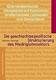 Die geschlechtsspezifische Strukturierung des Niedriglohnsektors: Eine vergleichende Perspektive auf Frankreich, Großbritannien, Schweden und Deutschland (Arbeit - Demokratie - Geschlecht)