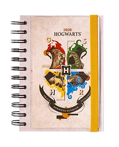 Erik - Agenda annuale 2020, giornaliera, multiuso: scuola, casa, lavoro, 11,4x16 cm - Harry Potter, Special Edition