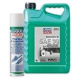LIQUI MOLY Rasenmäher-Öl SAE 30 + Pflege-Spray für Garten-Geräte