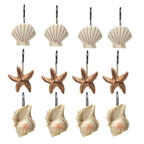 Duschvorhang Haken - AGPTEK 12 Stück dekorative Seashell Duschvorhang Haken - DIY Dekoration Seestern - Duschvorhangringe für Badezimmer Shell Decor (12 Stück)