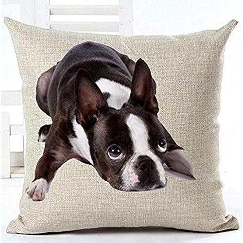 Hogan234Tom Kissenbezug, Baumwolle/Leinen, niedlich, lustig, Verschiedene Haustierhunde/menschliche Freunde/Boston Terrier/Dekoratives Sofa/Schlafzimmer / Wohnzimmer quadratisch, 45,7 cm (Boston Terrier Kissen)