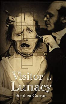 Visitor in Lunacy by [Curran, Stephen]