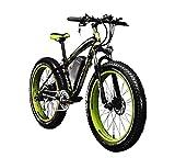 Elektrische Fahrräder Herren Radsport-Mountain Bike Fat Tire TP012 1000 W * 48 V * 17Ah Fat Tire 66 x 10,2 cm 7 Gänge SHIMANO dearilleur Power Fahrrad grün