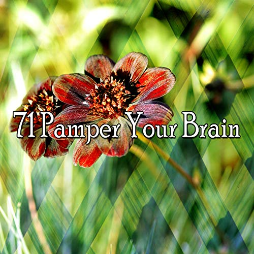 71 Pamper Your Brain