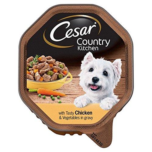Cesar Schmackhafte Chicken Soße und Hund Futterschacht 150g (Cesars Chicken Hundefutter)