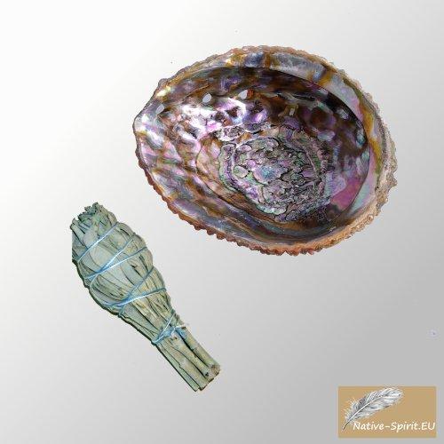 SET: Abalone Shell 13-15 cm (5-Inch), natürlich, schillernd und spirituell & kleiner weißer Salbei Stab (Weißer Salbei-stab)