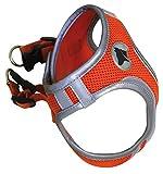 Croci C5081165 Hiking Geschirr Reflective, XS, orange