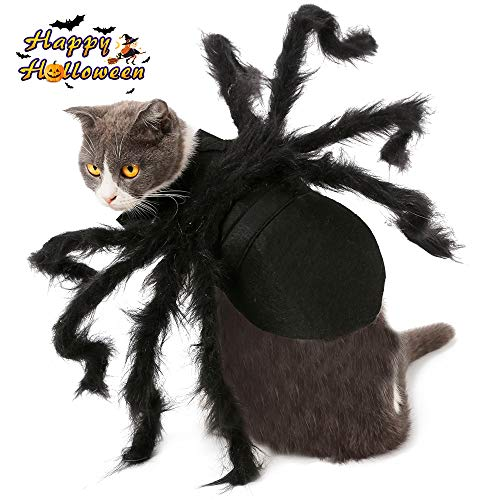 Sie Machen Einen Kostüm Besen - Halloween Hund Katze Kleidung Verkleidungen Cosplay Spinne, Morbuy Winter Haustier Lustiger Kostüm Set für Party Deko Bekleidung Hüte Haaraccessoires Dressing Up (S,Schwarze Spinne)