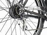 Fischer Proline ETH 1606 Herren E-Bike Trekking 24-Gang, 28 Zoll, 19173 - 8