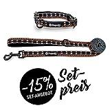 Pepolli Leinenset | Leine+Halsband für Französische Bulldogge, Frenchie, Bully, Frenchbulldog, Mops
