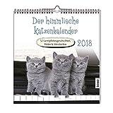 Der himmlische Katzenkalender 2018