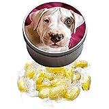 Dogo Argentino Animal limón Sherbet Sweet Tin 106