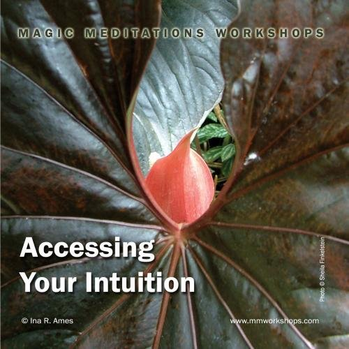 Accessing Your Intuition by Ina R. Ames