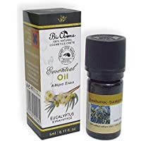 Essential oil of eucalyptus 5ml (100% Natural from Crete) preisvergleich bei billige-tabletten.eu