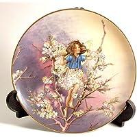 Heinrich Blackthorn Fata della collezione flower Fairies di Cicely Mary Barker cp224