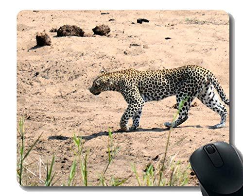 Yanteng Anti Slip Mouse Mat für Desktops, Wildlife Natur angepasst Mauspad