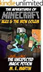 Minecraft: The Adventures of Minecraf...