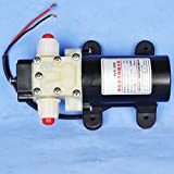 Denshine 12 V Micro diafragma agua autocebante bomba 25 W 3.2L/min 0,62 Mpa