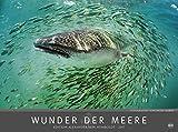 Wunder der Meere - Edition Alexander von Humboldt - Kalender 2017 - Heye-Verlag - Fotokalender - Wandkalender 78 cm x 58 cm