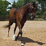 Unbekannt Mustang Balance Training System