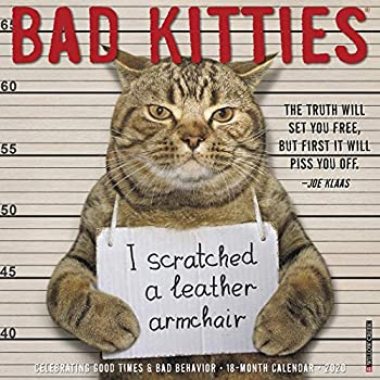 Bad Kitties 2020 Calendar